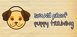 Download Soundproof Training Puppy Training