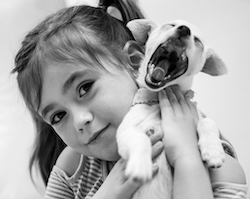 Kids n Canines Seminar