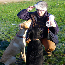 Tracy Ottina, trainer and AKC evaluator